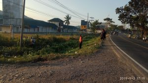 Kaur Pembangunan ikut membersihkan rumput liar yang ada di sepanjang jalan.